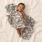 Aden + Anais Bamboo Swaddle 3-pack In Motion Wedges